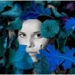 jacqueline-blue-5628